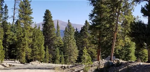 Photo of 463 Gold Trail Circle, FAIRPLAY, CO 80440 (MLS # S1031105)