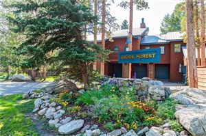 Photo of 130 Creekside Drive #B, FRISCO, CO 80443 (MLS # S1015156)