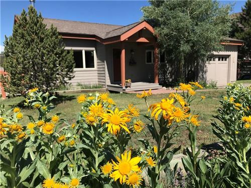 Photo of 955 Summit Drive, DILLON, CO 80435 (MLS # S1029159)