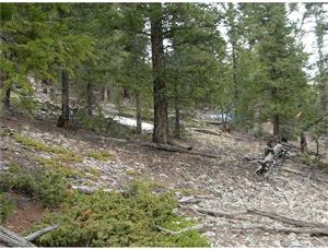 Photo of 0 MIDDLE FORK VISTA, FAIRPLAY, CO 80440 (MLS # S1012168)