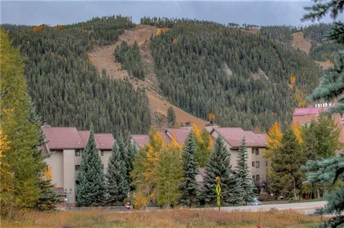 Photo of 23087 Barbour Drive #39, KEYSTONE, CO 80435 (MLS # S1031272)
