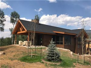 Photo of 1086 Maryland Creek ROAD, SILVERTHORNE, CO 80498 (MLS # S1010408)