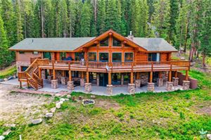 Photo of 166 County Road 628, BLUE RIVER, CO 80424 (MLS # S1014411)