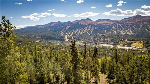 Photo of 1030 Gold Run Gulch Road, BRECKENRIDGE, CO 80424 (MLS # S1018425)