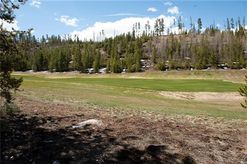 Photo of 300 Elk Circle, DILLON, CO 80435 (MLS # S1018429)