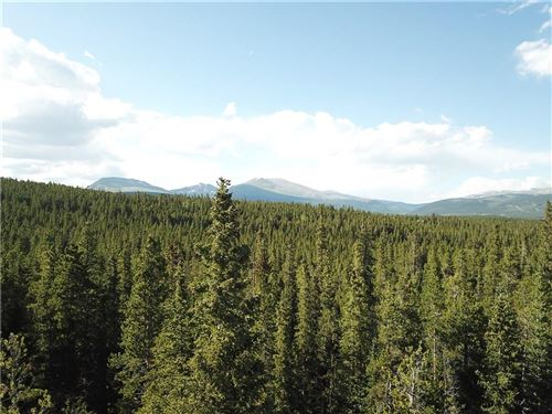 Photo of 635 VOTS Drive, FAIRPLAY, CO 80440 (MLS # S1018476)