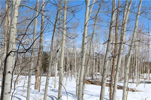 Photo of 568 Dry Lake Road, FAIRPLAY, CO 80440 (MLS # S1024484)