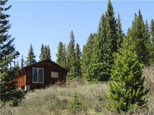 Photo of 156 Silk Sisters Place, FAIRPLAY, CO 80440 (MLS # S1027497)