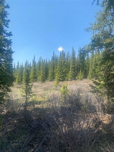Photo of 0 TBD, FAIRPLAY, CO 80440 (MLS # S1027519)