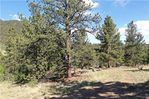 Photo of 1744 Ute Trail, COMO, CO 80432 (MLS # S1027564)