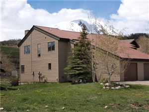 Photo of 393 W Coyote Drive, SILVERTHORNE, CO 80498 (MLS # S1013615)