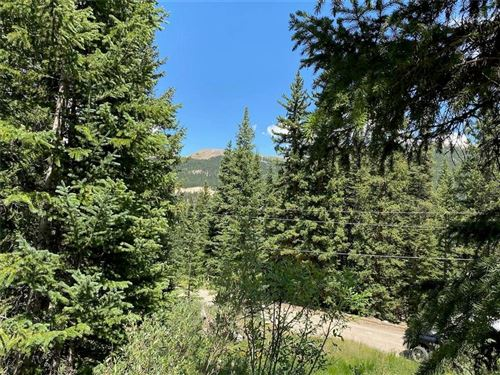 Photo of 485 Peterson Drive, ALMA, CO 80420 (MLS # S1019646)