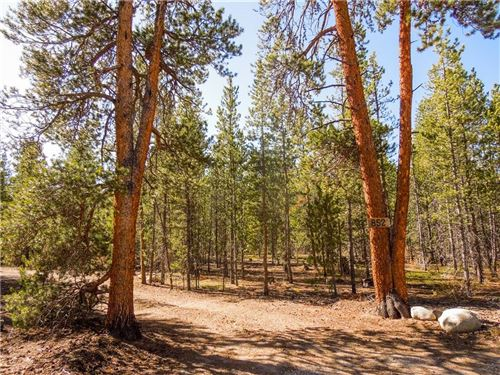 Photo of 852 Birch Dr, TWIN LAKES, CO 81251 (MLS # S1015668)