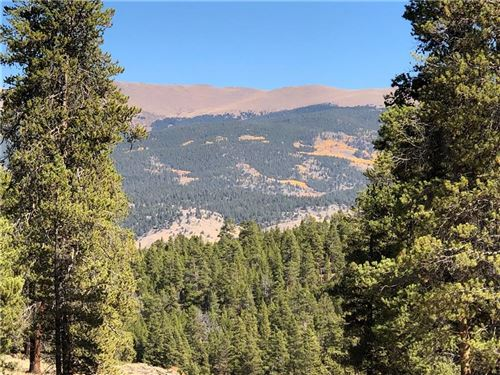 Photo of 179 Peak View Dr, TWIN LAKES, CO 81251 (MLS # S1015678)