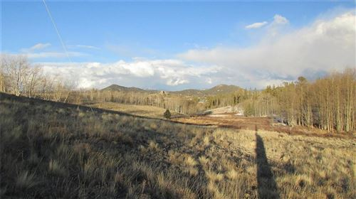 Photo of 548 Pronghorn Drive, COMO, CO 80432 (MLS # S1022829)