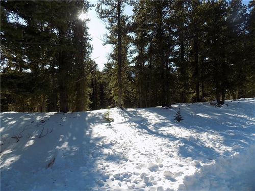 Photo of 375 T R Drive, FAIRPLAY, CO 80440 (MLS # S1015831)