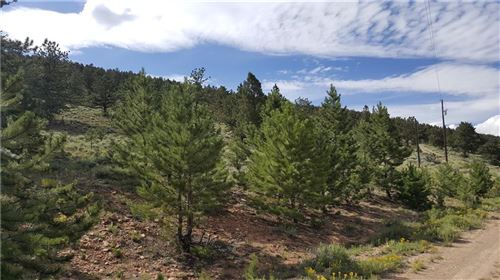 Photo of Lot 489 Redhill Road, FAIRPLAY, CO 80440 (MLS # S1014868)