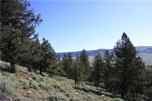 Photo of 4476 MIDDLE FORK VISTA, FAIRPLAY, CO 80440 (MLS # S1014891)