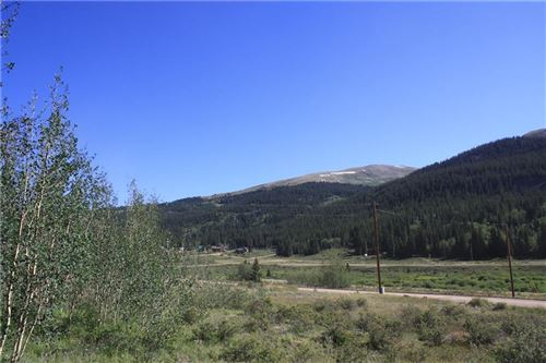 Photo of 2983 River Drive, ALMA, CO 80420 (MLS # S1020905)