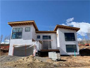 Photo of 1180 MARYLAND CREEK ROAD, SILVERTHORNE, CO 80498 (MLS # S1010907)
