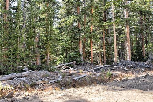 Photo of 605 El Lobo Lane, FAIRPLAY, CO 80440 (MLS # S1022943)