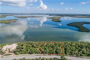 Photo of 1205 Blue Hill Creek DR, MARCO ISLAND, FL 34145 (MLS # 219075076)