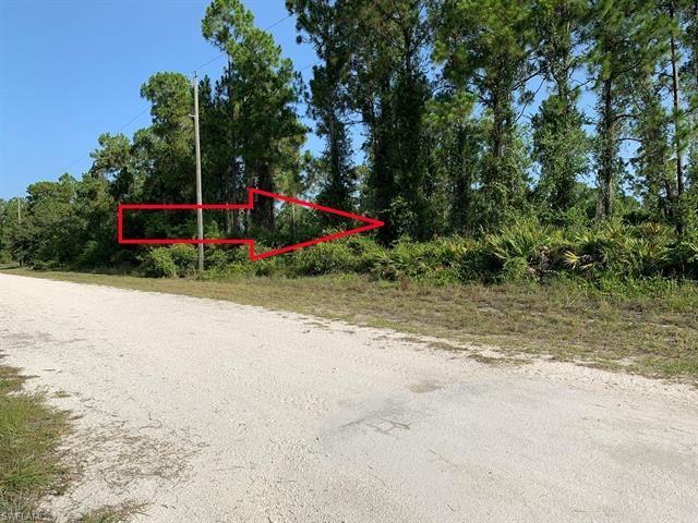 1801 Willard AVE, Lehigh Acres, FL 33972 - #: 220041108