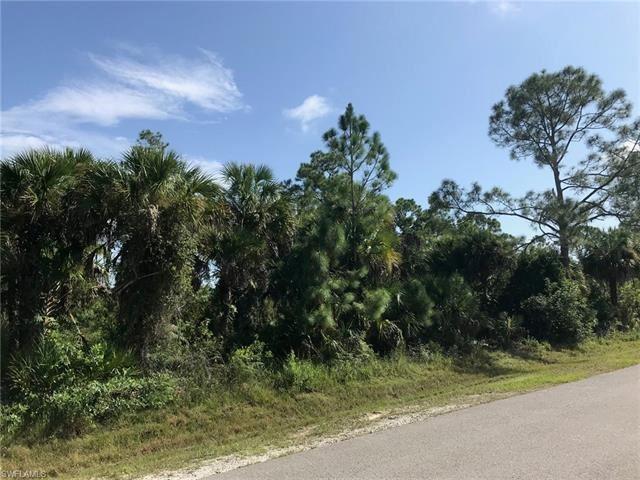 Photo of 10th AVE NE, NAPLES, FL 34120 (MLS # 221067586)