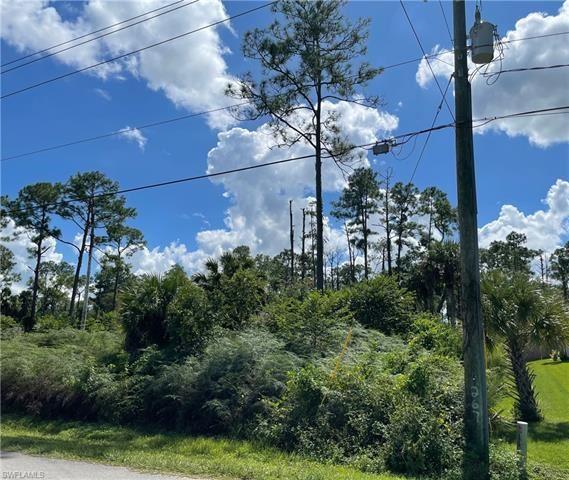 Photo of 2660 18th AVE NE, NAPLES, FL 34120 (MLS # 221073618)