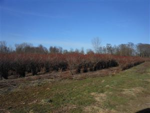 Photo of 645 S Blue Creek Road, Benton Harbor, MI 49022 (MLS # 18017000)