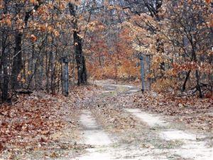 Photo of 4200 N Stone Road, Hesperia, MI 49421 (MLS # 18001010)