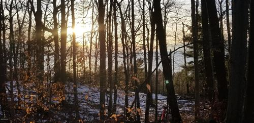 Photo of Lot 17 Sable Point Drive, Shelby, MI 49455 (MLS # 20004010)