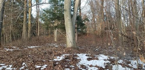Photo of Lot 27 Sable Point Drive, Shelby, MI 49455 (MLS # 20004014)