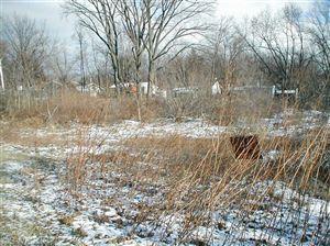 Photo of Red Arrow, Stevensville, MI 49127 (MLS # 12066025)