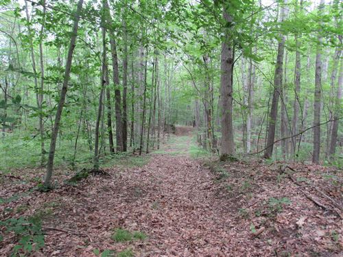Photo of Hardwood Trail, Evart, MI 49631 (MLS # 20030025)