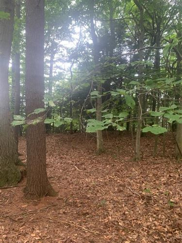 Photo of Lot 14 Sable Point Drive, Shelby, MI 49455 (MLS # 21099027)