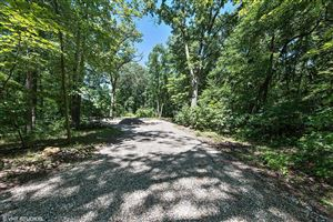 Photo of 13383 Trillium Lane #lot 14, New Buffalo, MI 49117 (MLS # 18059043)