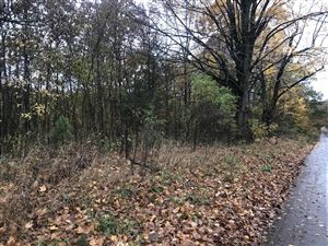 Photo of Lot A Garbow Road, Middleville, MI 49333 (MLS # 19053050)