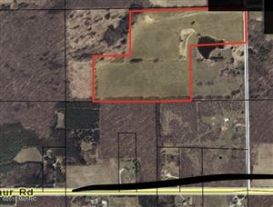 Photo of 20th Ave Vacant Land, Remus, MI 49340 (MLS # 18051051)