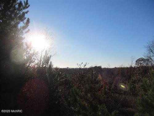Photo of 7666 Wills Road, Bear Lake, MI 49614 (MLS # 20047061)