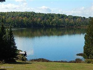 Photo of 320 Sage Lake Road, Rose City, MI 48654 (MLS # 19001072)