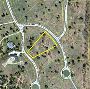 Photo of Lot 123 Eagle Ridge Circle, Onekama, MI 49675 (MLS # 19000098)