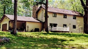 Photo of 18720 Nine Mile Road, Kaleva, MI 49645 (MLS # 17024102)