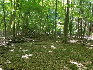 Photo of VL Private Drive, Pentwater, MI 49449 (MLS # 18034115)