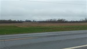 Photo of 100 Acres Polk Road, Hart, MI 49420 (MLS # 19018128)