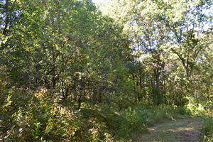 Photo of 31 Bix Trail, Montague, MI 49437 (MLS # 19010137)