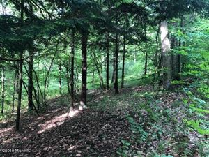 Photo of 6984 Old State Road, Stanwood, MI 49346 (MLS # 19027137)