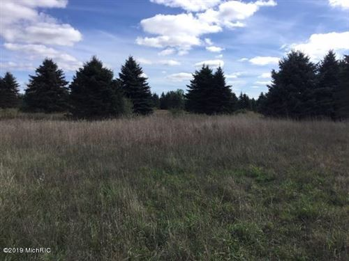 Photo of 8300 N 66th Avenue #Parcel B, Pentwater, MI 49449 (MLS # 19051138)