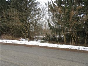 Photo of 3246 Sunset Drive, Bridgman, MI 49106 (MLS # 19004152)