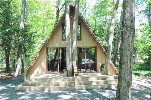 Photo of 8976 W Ottawattamie Trail, Shelby, MI 49455 (MLS # 21021160)